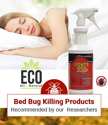 Bed Bug Killing