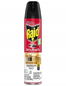 Raid Cockroach Killing Spray