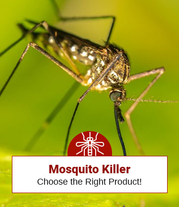 Choose The Right Product for Killing Mosquitoes