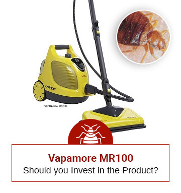 Review of The Bed Bug Steamer Vapamore MR-100