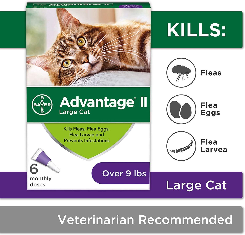Advantage II Flea Control Treatment for Cats