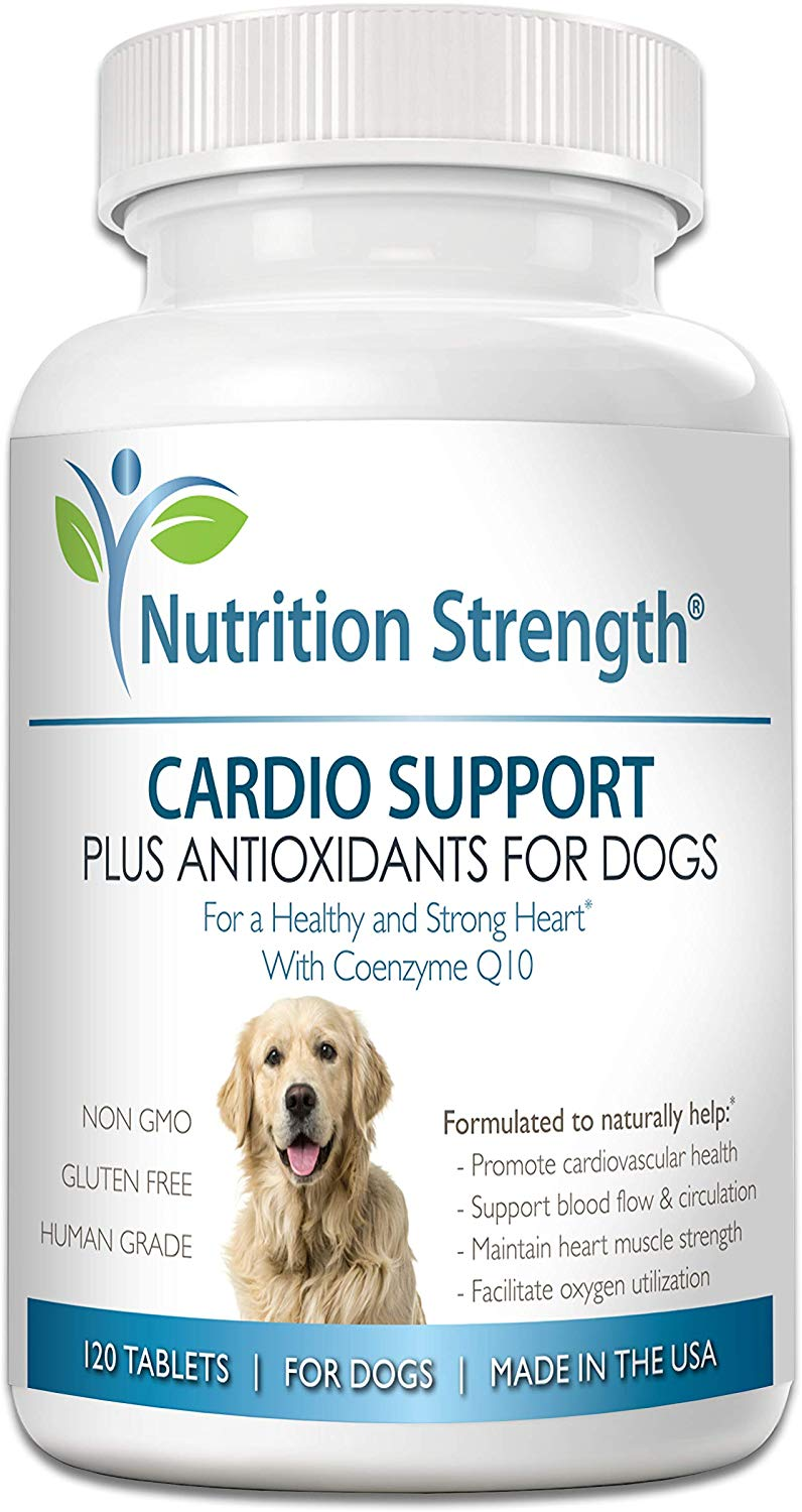 Nutrition Strength for Dogs